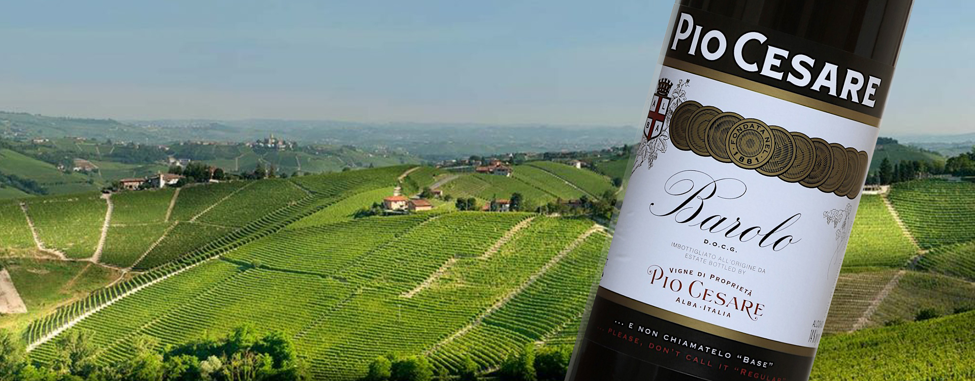 Pio Ceasre Wines